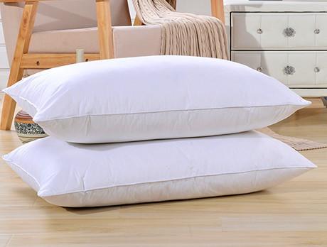 Duck & Goose Feather Pillows