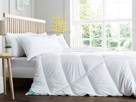 Duvets & Pillows Collection