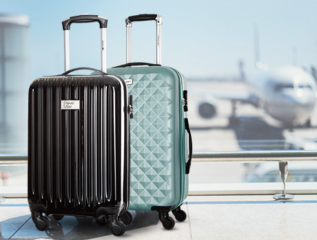 Platinium Luggage