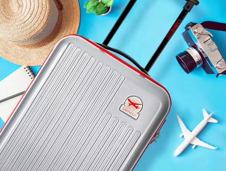The Platinium Luggage Edit